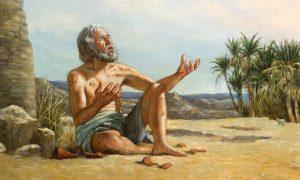Ketekunan Ayub Dalam Kesalehan